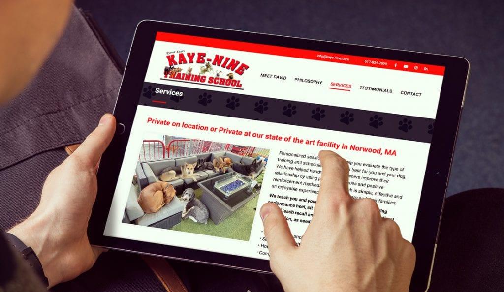 kaye nine training school website design